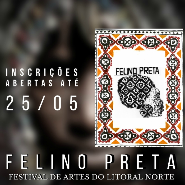 Festival de Música Felino Preta